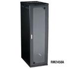 RM2450A_P3CS